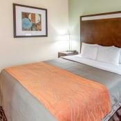 Comfort Inn - Chandler